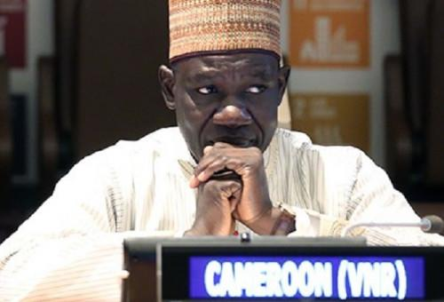Devant le FMI et la Banque mondiale, Alamine Ousmane Mey plaide pour le financement du secteur privé en Afrique