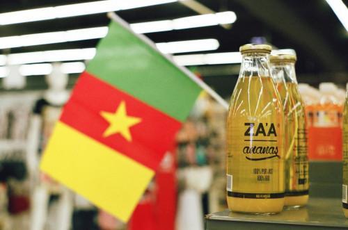 Les Camerounais détiennent 90% des entreprises au Cameroun, suivi des Nigérians, les pays hors Cemac et les Chinois
