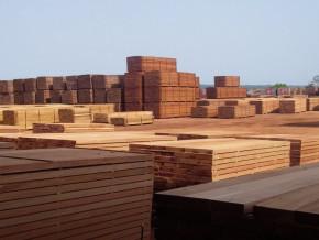 la-hausse-continue-de-la-taxe-a-l-exportation-plombe-les-ventes-du-bois-camerounais-sur-le-marche-chinois-au-1er-trimestre-2018