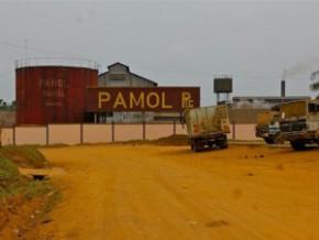 la-crise-dans-le-sud-ouest-du-cameroun-impacte-la-filiere-huile-de-palme-au-sein-de-la-cdc-et-pamol