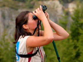 tourisme-ornithologique-un-filon-pour-relancer-le-secteur-touristique-au-cameroun-apres-le-covid-19