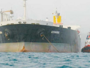 cameroun-perenco-atteint-une-production-de-16-3-millions-de-barils-d-huile-et-1-7-milliard-m3-de-gaz-en-2018