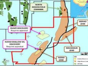 cameroun-tower-resources-choisit-oilfield-international-pour-evaluer-le-potentiel-petrolier-de-la-licence-thali