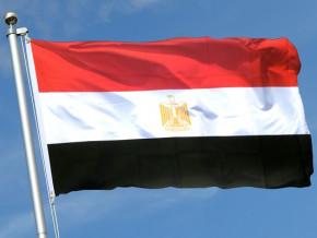 l-egypte-veut-investir-dans-la-transformation-du-bois-au-cameroun