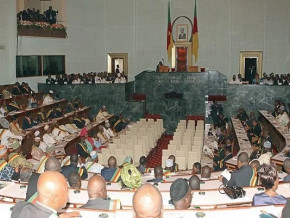 le-contenu-du-statut-special-accorde-aux-regions-anglophones-du-cameroun-soumis-a-la-validation-du-parlement