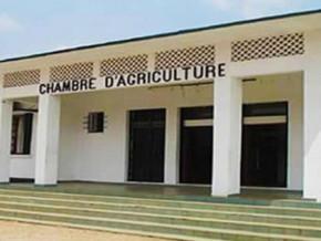 un-interimaire-a-la-tete-de-la-chambre-d-agriculture-du-cameroun-apres-les-deces-successifs-de-deux-presidents