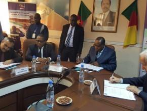 les-entreprises-qui-vont-realiser-le-projet-d-electrification-de-150-localites-a-l-est-du-cameroun-sont-connues