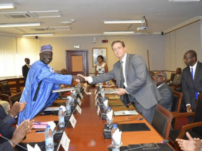 la-societe-suisse-tree-global-s-engage-a-produire-50-millions-de-semences-par-an-au-cameroun