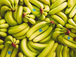 en-mars-2020-les-exportations-de-la-banane-camerounaise-chutent-de-plus-6000-tonnes