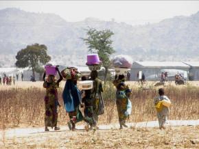 cameroun-plus-de-36-de-la-population-des-regions-de-l-est-du-nord-de-l-adamaoua-et-de-l-extreme-nord-vit-dans-l-insecurite-alimentaire-pam