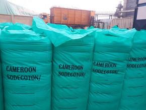 le-cameroun-affiche-une-production-record-de-357-000-tonnes-de-coton-au-cours-de-la-campagne-2020-2021