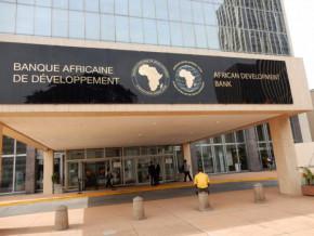 la-bad-va-a-la-rencontre-des-operateurs-economiques-camerounais-pour-les-sensibiliser-sur-ses-instruments-de-financement-du-secteur-prive