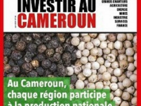 au-cameroun-chaque-region-participe-a-la-production-nationale