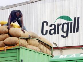 cacao-l-americain-cargill-avec-49-des-achats-est-le-1er-client-du-cameroun-a-l-international-sur-la-saison-2020-2021