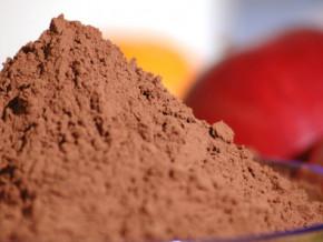 la-quantite-de-cacao-transforme-par-les-unites-artisanales-camerounaises-baisse-de-12-8-tonnes-lors-de-la-saison-2020-2021