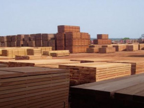avec-2-des-importations-chinoises-de-bois-scies-au-1er-trimestre-2018-le-cameroun-se-maintient-dans-le-top-5-des-fournisseurs-de-l-empire-du-milieu