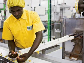 cameroun-le-centre-technique-agroalimentaire-en-campagne-de-sensibilisation-des-acteurs-de-la-filiere