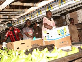 le-cameroun-demarre-l-annee-2020-avec-des-exportations-de-bananes-en-baisse-de-535-tonnes