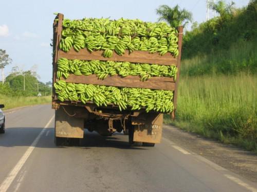 Cameroun : 360 projets industriels cherchent investisseurs ...