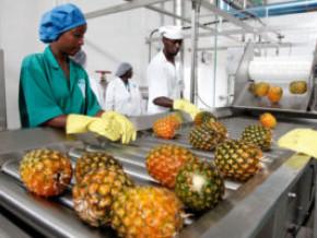 entre-60-et-80-des-industries-agroalimentaires-desormais-inaccessibles-dans-le-nord-ouest-et-le-sud-ouest