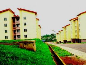 la-sfi-affiche-son-interet-pour-le-secteur-de-l-immobilier-au-cameroun