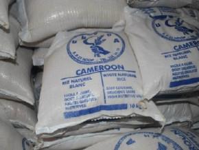 produits-alimentaires-la-sfi-envisage-d-investir-dans-le-made-in-cameroon