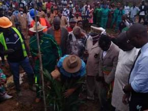 la-societe-camvert-ambitionne-de-planter-50-000-hectares-de-palmeraies-a-campo-dans-le-sud-du-cameroun
