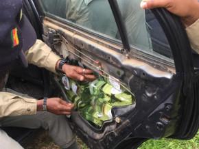 au-cameroun-portieres-capots-et-boites-a-gants-des-vehicules-servent-a-dissimuler-les-produits-de-contrebande