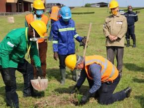 camrail-plante-150-arbres-le-long-de-la-voie-ferree-a-l-occasion-de-la-journee-mondiale-de-l-environnement