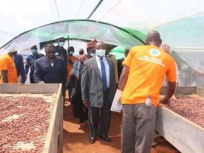 cacao-de-qualite-superieure-le-cameroun-construira-3-nouveaux-centres-d-excellence-de-traitement-post-recole-en-2021