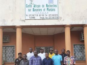 njombe-peril-sur-les-activites-du-centre-africain-de-recherche-sur-bananiers-et-plantains