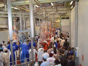 investissement-de-5-milliards-fcfa-l-abattoir-industriel-de-ngaoundere-est-boude-par-les-eleveurs-au-profit-des-aires-d-abattage-artisanales