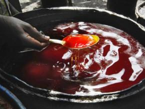 le-cameroun-va-importer-100-000-tonnes-d-huile-de-palme-brute-du-gabon-et-de-l-indonesie