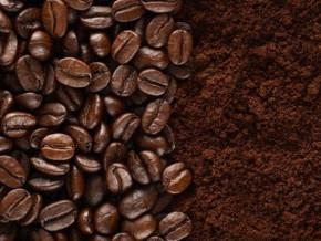 le-cameroun-inaugure-une-nouvelle-usine-de-transformation-du-cafe-dans-la-region-du-nord-ouest