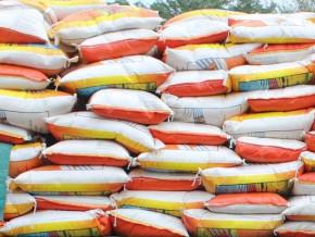 les-importations-de-riz-du-cameroun-progressent-de-23-au-premier-semestre-2021