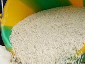 cameroun-le-gouvernement-et-les-operateurs-des-filieres-s-accordent-sur-une-stabilisation-des-prix-du-poisson-et-du-riz