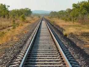 le-cameroun-organisera-en-septembre-une-table-ronde-des-investisseurs-pour-la-construction-de-291-km-de-voies-ferrees