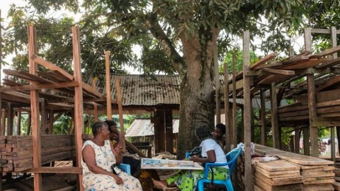 un-projet-de-3-milliards-de-fcfa-lance-au-cameroun-pour-booster-le-marche-local-du-bois-d-oeuvre