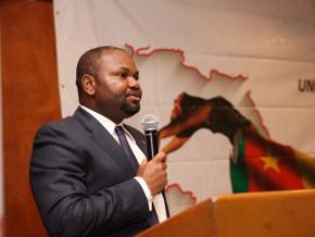 un-tandem-camerounais-porte-a-la-tete-de-la-filiale-locale-du-groupe-bancaire-nigerian-uba
