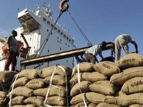 le-cameroun-parie-sur-la-digitalisation-des-procedures-pour-securiser-ses-recettes-d-exportation-du-cacao-et-du-cafe