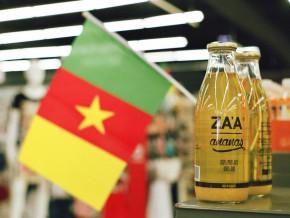 les-camerounais-detiennent-90-des-entreprises-au-cameroun-suivi-des-nigerians-les-pays-hors-cemac-et-les-chinois