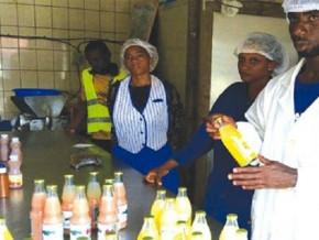 2-milliards-de-fcfa-a-distribuer-a-720-pme-et-artisans-camerounais-apres-les-ravages-de-la-pandemie-du-covid-19