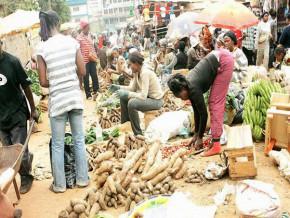 le-cameroun-s-apprete-a-voter-une-loi-sur-la-securite-alimentaire