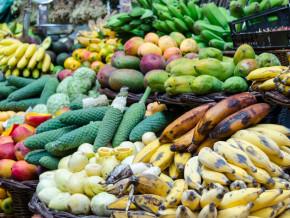 les-fruits-et-legumes-provenant-du-cameroun-en-sursis-sur-le-marche-europeen