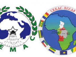 le-cameroun-abrite-des-negociations-en-vue-de-la-mise-en-oeuvre-d-un-tarif-exterieur-commun-entre-les-pays-de-la-cemac-et-de-la-ceeac