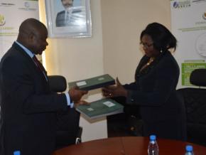 la-banque-camerounaise-des-pme-se-positionne-sur-le-financement-agricole-grace-a-un-partenariat-avec-le-pidma