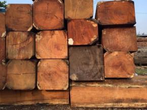 les-exportations-camerounaises-de-bois-scies-vers-le-marche-europeen-ont-chute-de-8-au-premier-semestre-2018