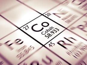 le-cameroun-est-le-pays-des-elephants-pour-le-cobalt-et-le-nickel-selon-roger-murphy-ceo-d-african-battery-metals