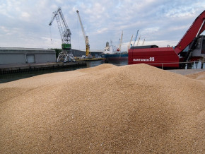 le-cameroun-devrait-importer-jusqu-a-900-000-tonnes-de-ble-au-cours-de-l-annee-2020