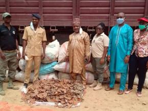 la-douane-camerounaise-met-en-echec-une-tentative-d-exportation-de-4-4-tonnes-d-ecailles-de-pangolin-vers-le-nigeria